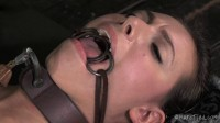 Casey Calvert Cyd Black In Heat (genres, new, download)!