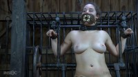 Conjugal Visit - Only Pain HD