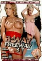 Download 3-Way Freeway 3
