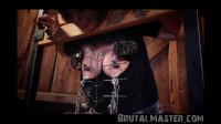 BrutalMaster — Cow — Stocks Up