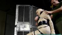 JJ Plush Mummified and Hogtied Part 1