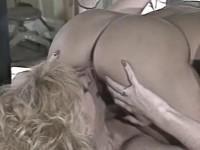 Lesbians appreciate the vagina