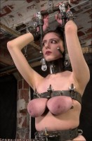 Insex - 101 in Metal (Live Feed From April 5)Extreme Bondage - 2001