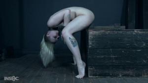 Begging Board Bitch - Arielle Aquinas [Eng]