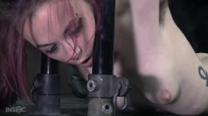 Pit Pull [2016,BDSM,Bondage,Submission][Eng]