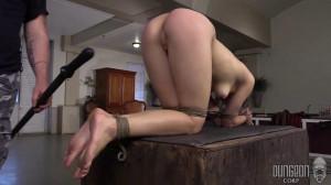 The Training of a Slut part 2 [Eng]