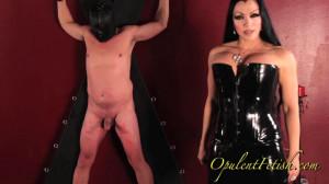 Cock Whipping [OpulentFetish.com][Eng]
