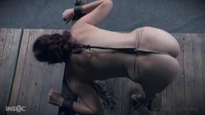 Stuff Me  - Stephie Staar [2017,BDSM,Rope Bondage,Torture][Eng]