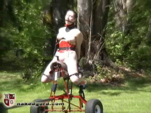 friend Dee Saddle Fuck Machine [2019,penetration,outdoors,transport][Eng]