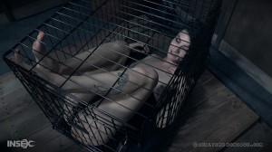 [RealTimeBondage.com] Oct 7, 2017: A Good Time Part 3 | Riley Reyes [2017, BDSM, Torture, Humiliation]