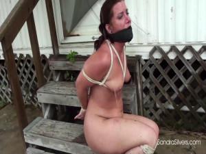 Sandra Silvers Fayth [2018][Eng]
