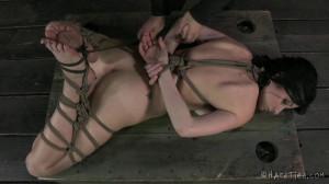 HT - Veruca James and Cyd Black - Presenting Veruca James [2014,Veruca James,Fetish,Extreme Bondage,Humilation][Eng]