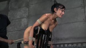 HT - Beretta James, Jack Hammer - A Gunning For Beretta [2014,Beretta James,Extreme Bondage,Domination,Fetish][Eng]