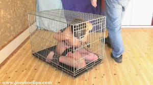 Caged Blowjob Slave Girl XXL [2016,Bondage,Anal Play,Blowjob][Eng]