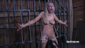 Rain Degrey [2010,Rain Degrey,BDSM,Humilation,Bondage][Eng]