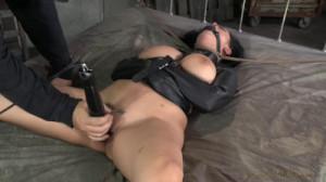 Big Breasted Katrina Jade Gets Manhandled [Sexuallybroken][Eng]