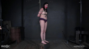 Miranda Miller [Miranda Miller,BDSM,Humiliation,Whipping][Eng]