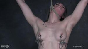 Cora Moth - The Wrecking Ball (2020) [2020,Cora Moth,BDSM][Eng]