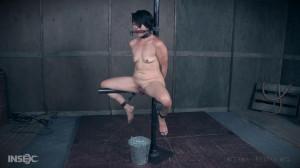 Buckets Of Fun - Mia Torro [2017,Bondage,Submission,Rope Bondage][Eng]