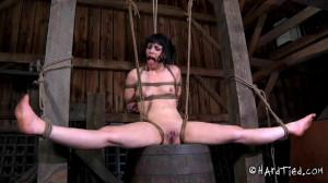 Stretching Legs (Katharine Cane) Hardtied [Domination,BDSM,Torture][Eng]
