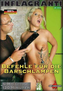 Befehle fur die Barchlampen [2010,Inflagranti][Eng]