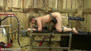 Ariel – red cow milker and fucking machine [2021,Ariel,bondage,breast pump][Eng]