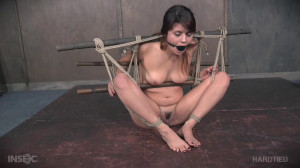 Rope Her and Pole - Raquel Roper [2018,HT,Cool Girl,BDSM][Eng]