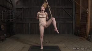 Double Jointed - Delirious Hunter, OT [2014,Bondage,Rope Bondage,Submission][Eng]