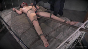 Cunt Puppy Part 3 - Ashley Lane [2014,Spanking,Bondage,Rope Bondage][Eng]