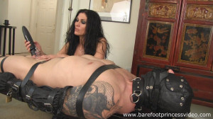 Orgasm Impossible [2013,clips4sale.,Chastity,made Orgasms][Eng]