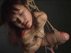 Two Houre Japanese Bdsm [2012,Bdsm,Bondage][Eng]