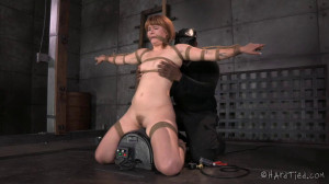 HT - A Little Miss Robbins - Jack Hammer, Claire Robbins [2014,Claire Robbins,BDSM,Extreme Bondage,Domination][Eng]