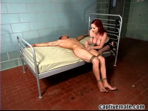 Berlin and Rocky - Groin Issues [Humiliation,Strapon,FemDom][Eng]