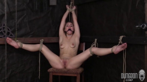Kenzie Madison - The Slave and Her Suffering Art vol.4 [Eng]