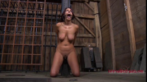 Empty Vessel [2018,Caning,Toys,Nipple Clamps][Eng]