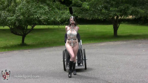 Training the Trainer [2016,House of Gord,Natalie Minx,Outdoors,Training,Collars][Eng]
