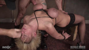 Dee Williams in the hardest hour in Porn! [Deep Throat,Blowjob,All Sex][Eng]