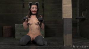 In Heat [Casey Calvert,Nipple Clamps,BDSM,Ring Gag][Eng]