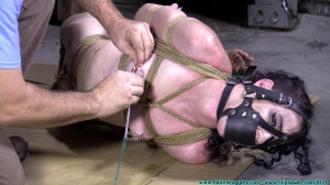 Lydia Black's Box Hogtie [2020, nipple clamps, harness gag, feet and toes bondage][Eng]