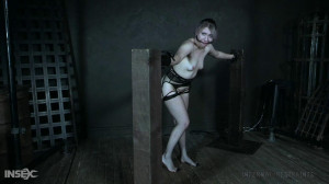 Lex Luthor - Canned [2020,Lex Luthor,Anal Play,Stockings,BDSM][Eng]