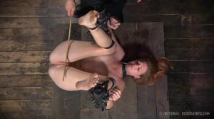 Bondage and Humilation For Screamer Ashley Lane [2014,Ashley Lane,Spanking,Bondage,Torture][Eng]