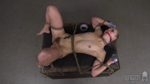 Dungeon Corp - Sadie Blair - The Shy Submissive Monster part 3 [2015,Dungeon Corp,Sadie Blair,bdsm rough sex,rope,BDSM][Eng]