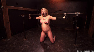 Humiliated and Tortured [2020,Abby Marie,Torture,Humiliation,BDSM][Eng]