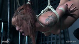Mae I Cum - Scarlett Mae [Bondage,BDSM,Torture][Eng]