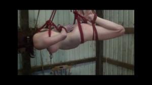 Dani Punished in the Barn [2017,Humiliation,Bondage][Eng]