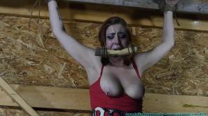 Barnyard Captive Riley Jane Spreadagle To the Wall - Extreme, Bondage, Caning [2018,Facial,Humiliation,Spanking][Eng]