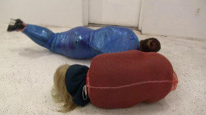 Vivienne and Fayth Scientifically Cocooned [2019,BDSM,Rope,Bondage][Eng]