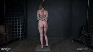 In Your Laine [2020,BDSM,Whipping,Torture][Eng]