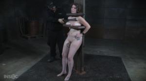 Porky [2015,Breast Bondage,Vibrator,Bit Gag][Eng]