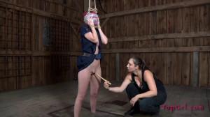 Definitions Part Two [BDSM,bondage][Eng]
